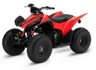 2020 Honda TRX90X 3-Speed Automatic Clutch