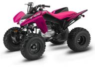 2021 Honda TRX250X SportClutch™